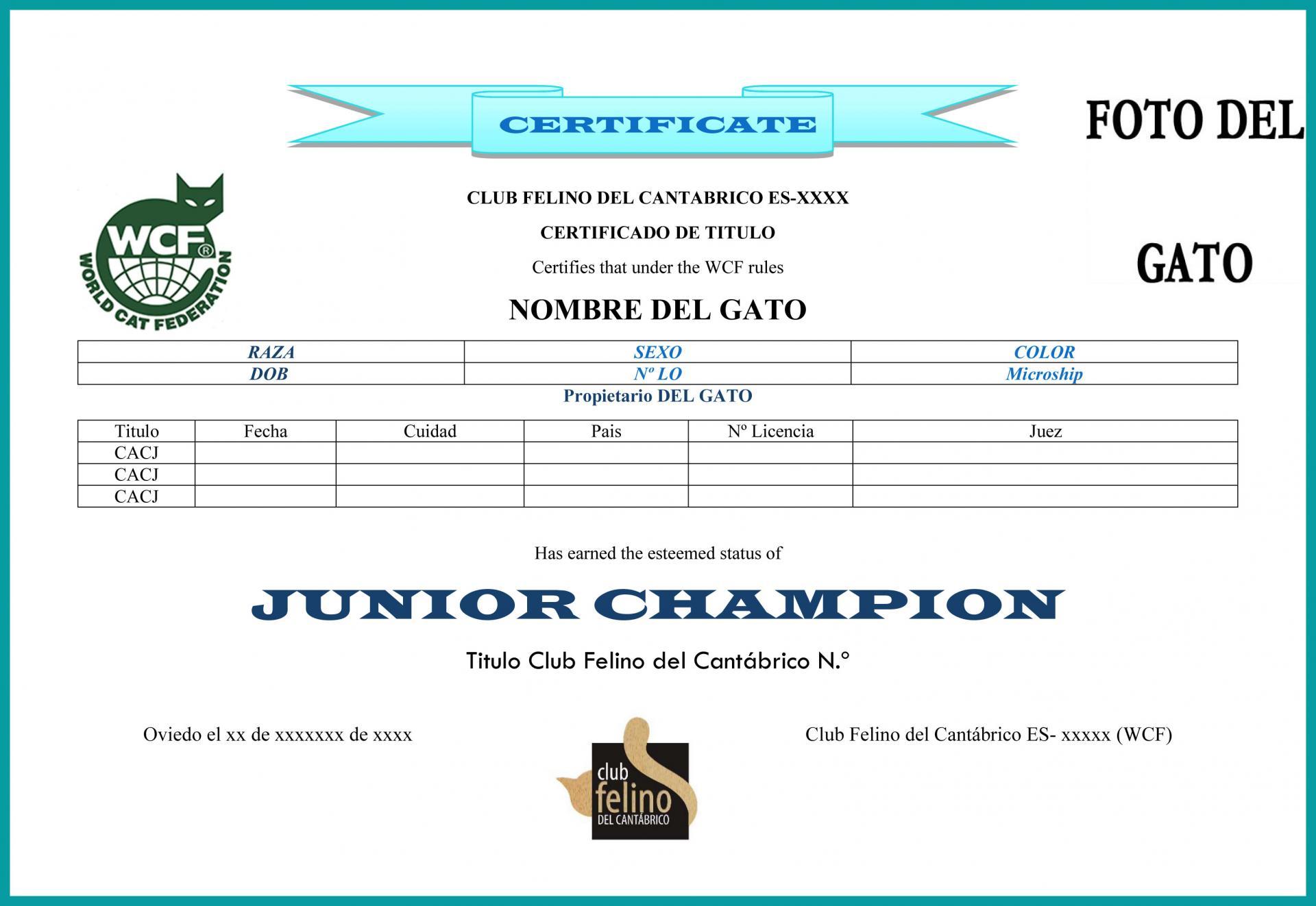 Certificate titulo 2