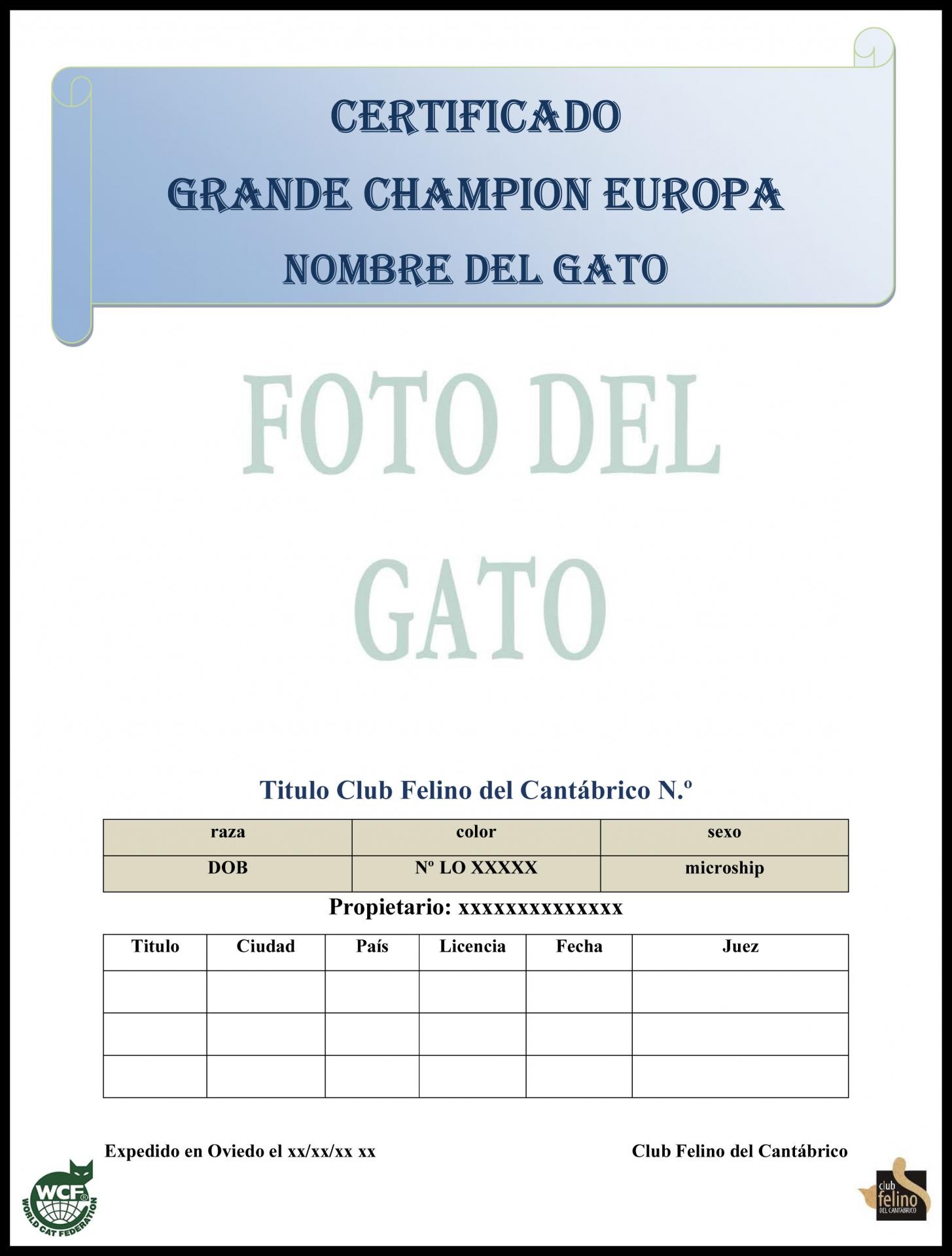Certificate titulo 3